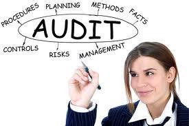1_revised audit tool image