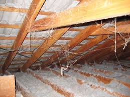 Availability of Assistance for Homes with Loose Fill Asbestos Announced